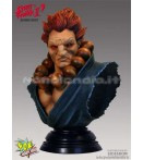 "BU Street Fighter - Akuma - 10"" Bust"