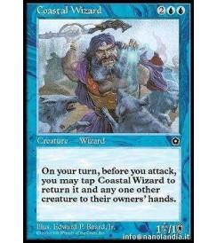 Coastal Wizard
