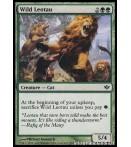 Wild Leotau