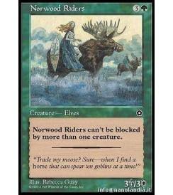 Norwood Riders