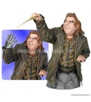 BU Harry Potter - Peter Pettigrew Wormtail - 1/6 Bust