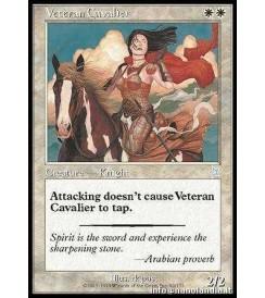 Veteran Cavalier