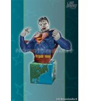 HEROES OF THE DCU BIZARRO BUST