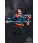 "BU Heroes of the DCU - Superman - 6"" Bust"