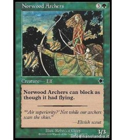 Norwood Archers
