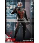"""Action Figure - Hot Toys - Ant-Man 12"""" Ant-Man Af"""